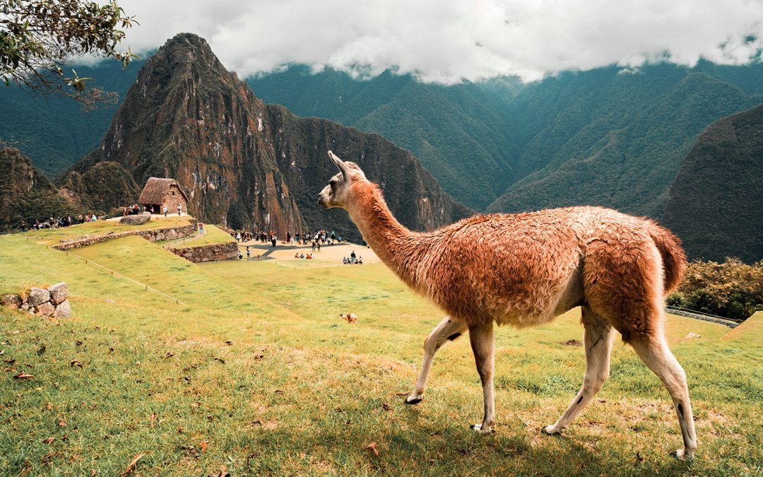 Est ce cher de partir au Pérou ?